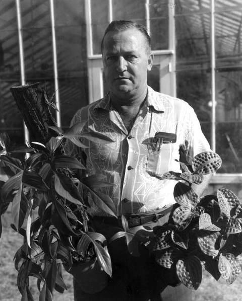 Owner Bob McColley with plants- Orlando, Florida .